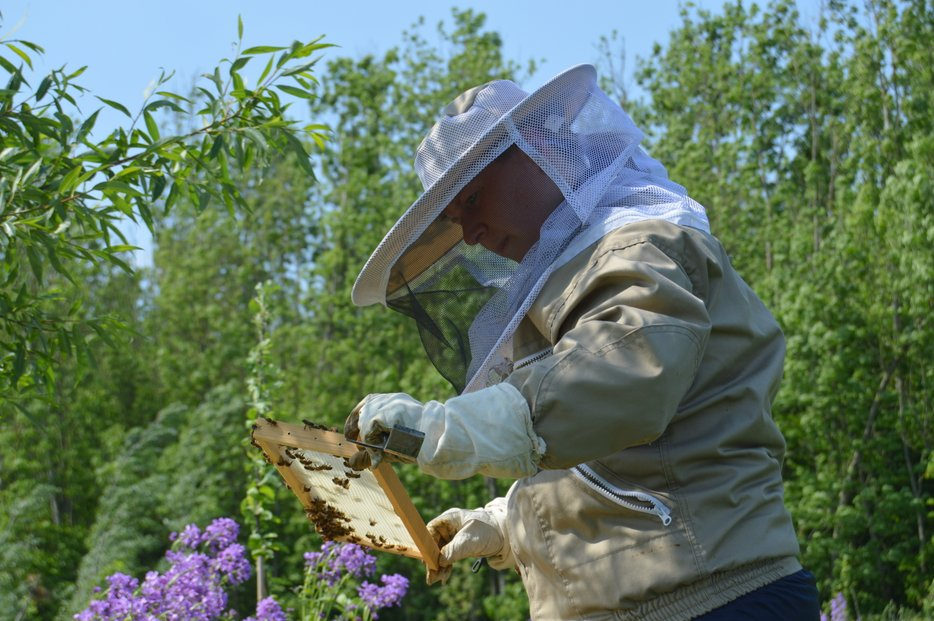 Bijeninspectie Paradijsvogelbosje Oosterwold